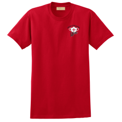 """Healthcare Hero"" Red Tee"